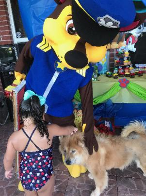 Rent this Police dog mascot costumed character for child's birthday party in Houston.