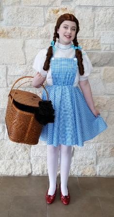 Have our Wizard of Oz dorathy at your little princesse birthday party in Houston for a magical time.